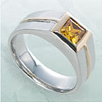 pht_ring_06